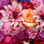 BeautifulU-Banner-Flowers